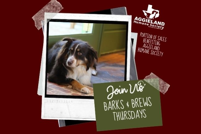 Barks and Brews at The Canteen